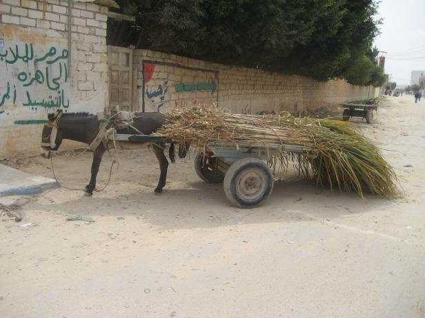Siwa taxi