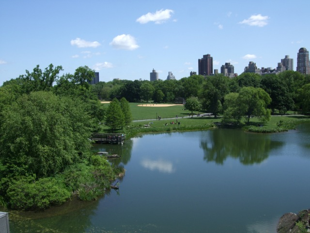 More Central Park