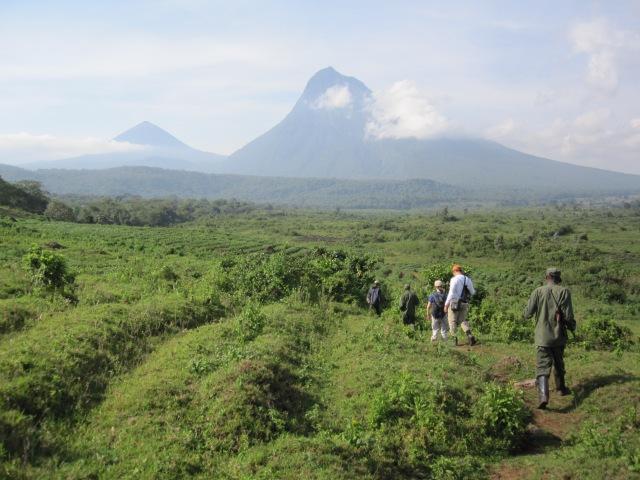 Virungas National Park