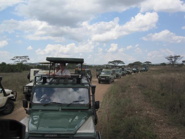 Tim Horton's has nothing on the Serengeti