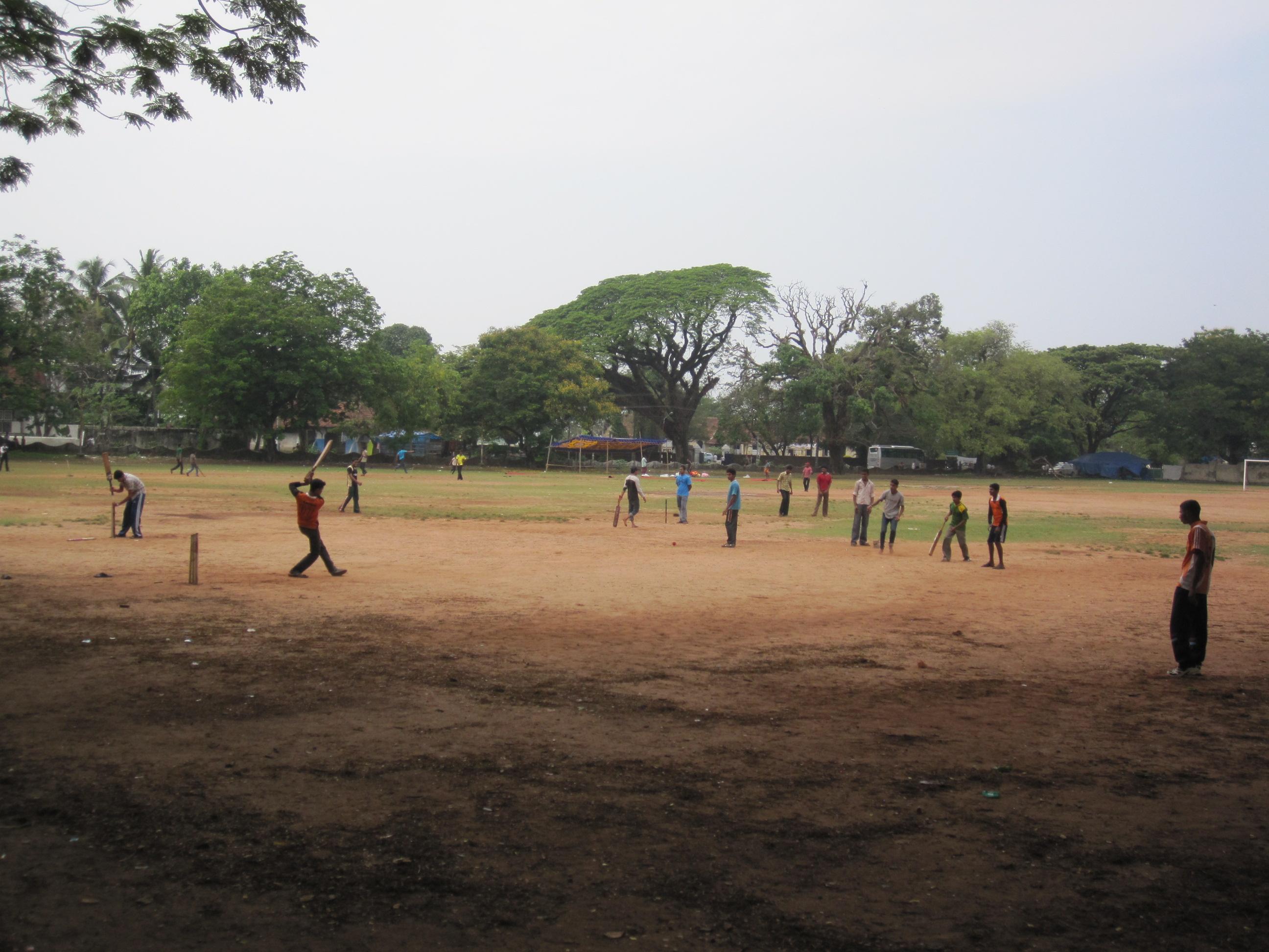 Cricket-mania