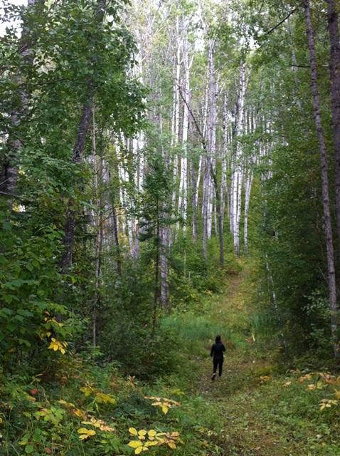 Hiking the Narrows Peninsula