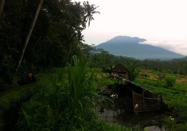A slice of rural Bali
