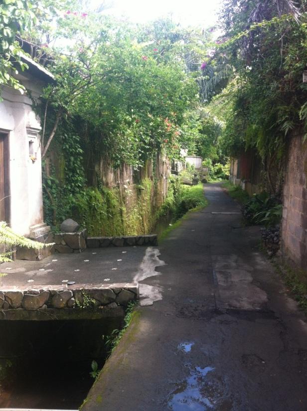 Back streets of Penestanan