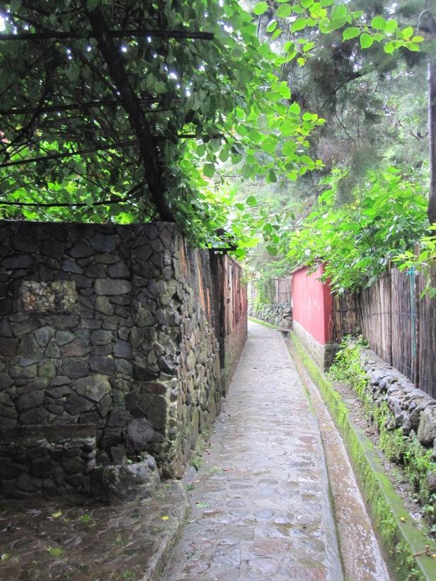 San Marcos street