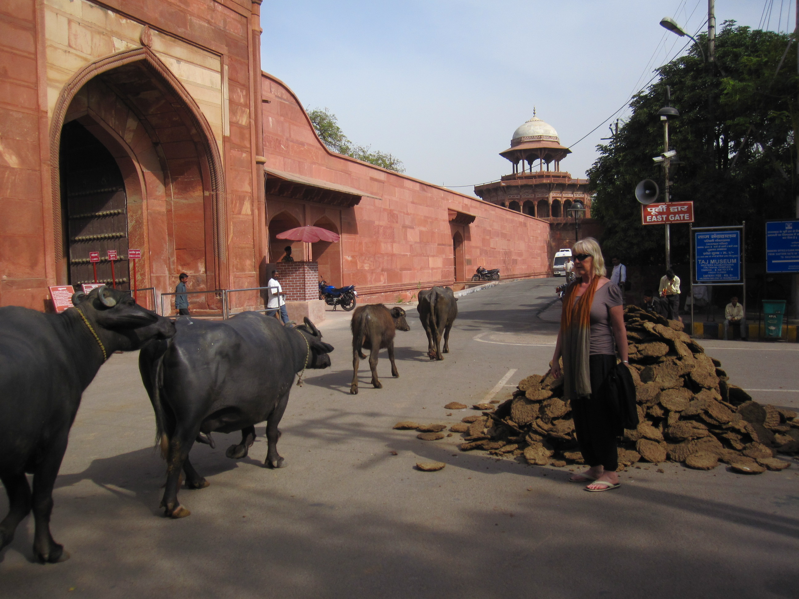 Life goes on outside the Taj Mahal