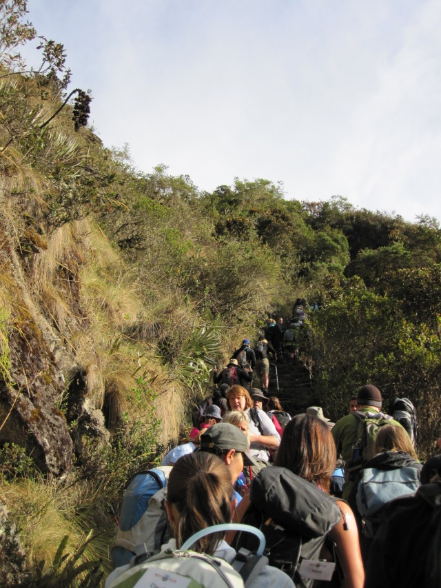 Merging onto the Inca highway