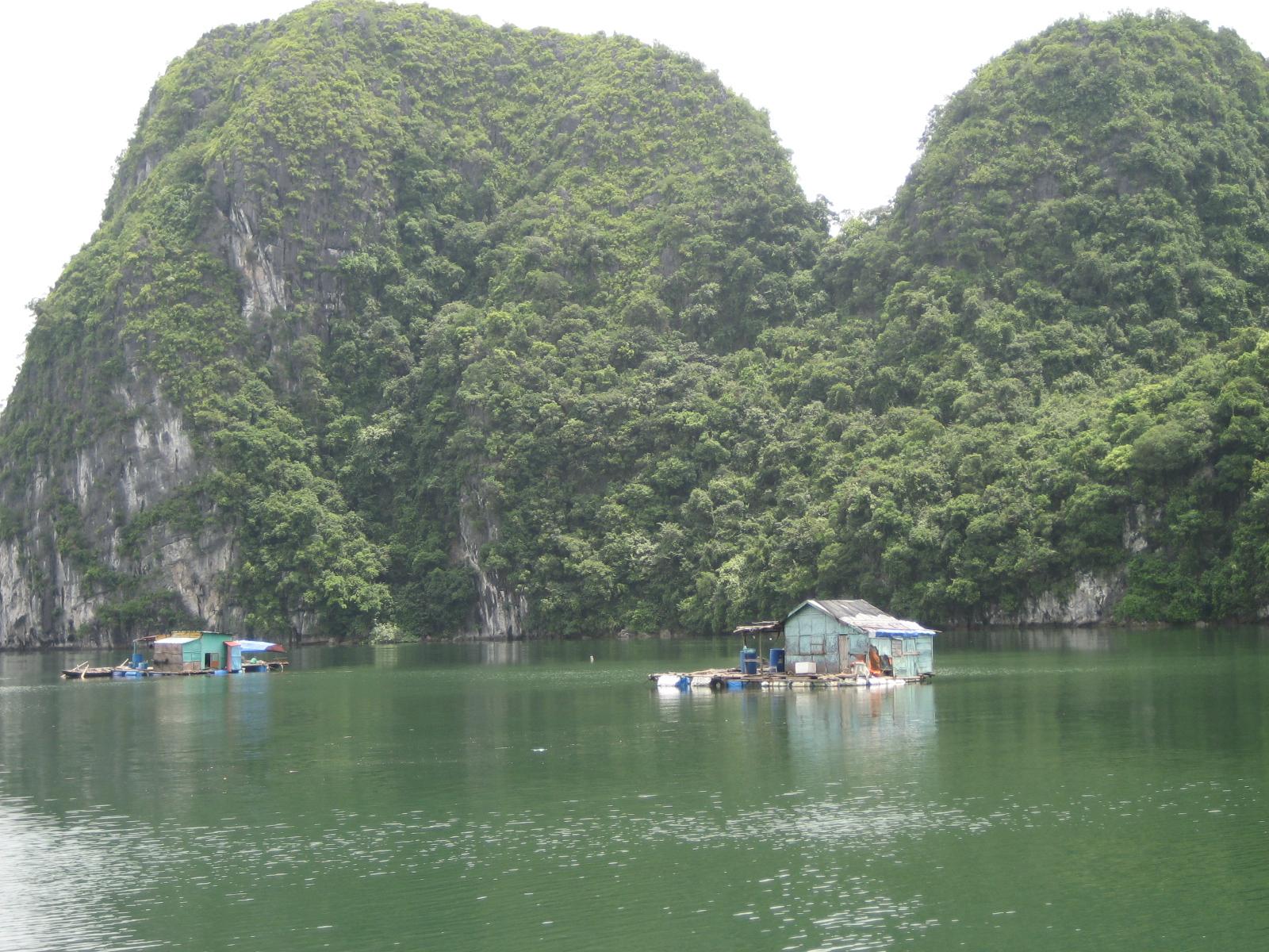 Houseboats of Ha Long Bay