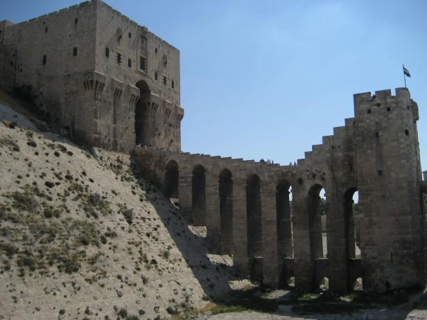 Castle in Aleppo
