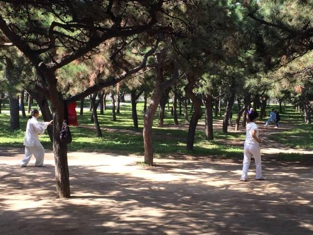 Tai chi (?) in the park