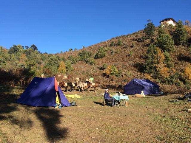 Campsite #1