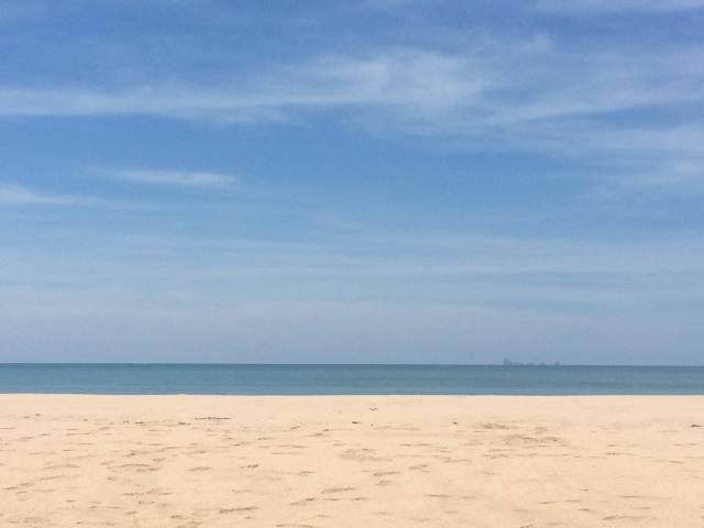 Bamboo Bay