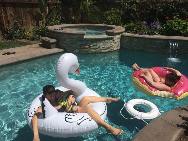 Swan magic
